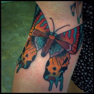 Butterfly By Anthony Mealie 1.2014